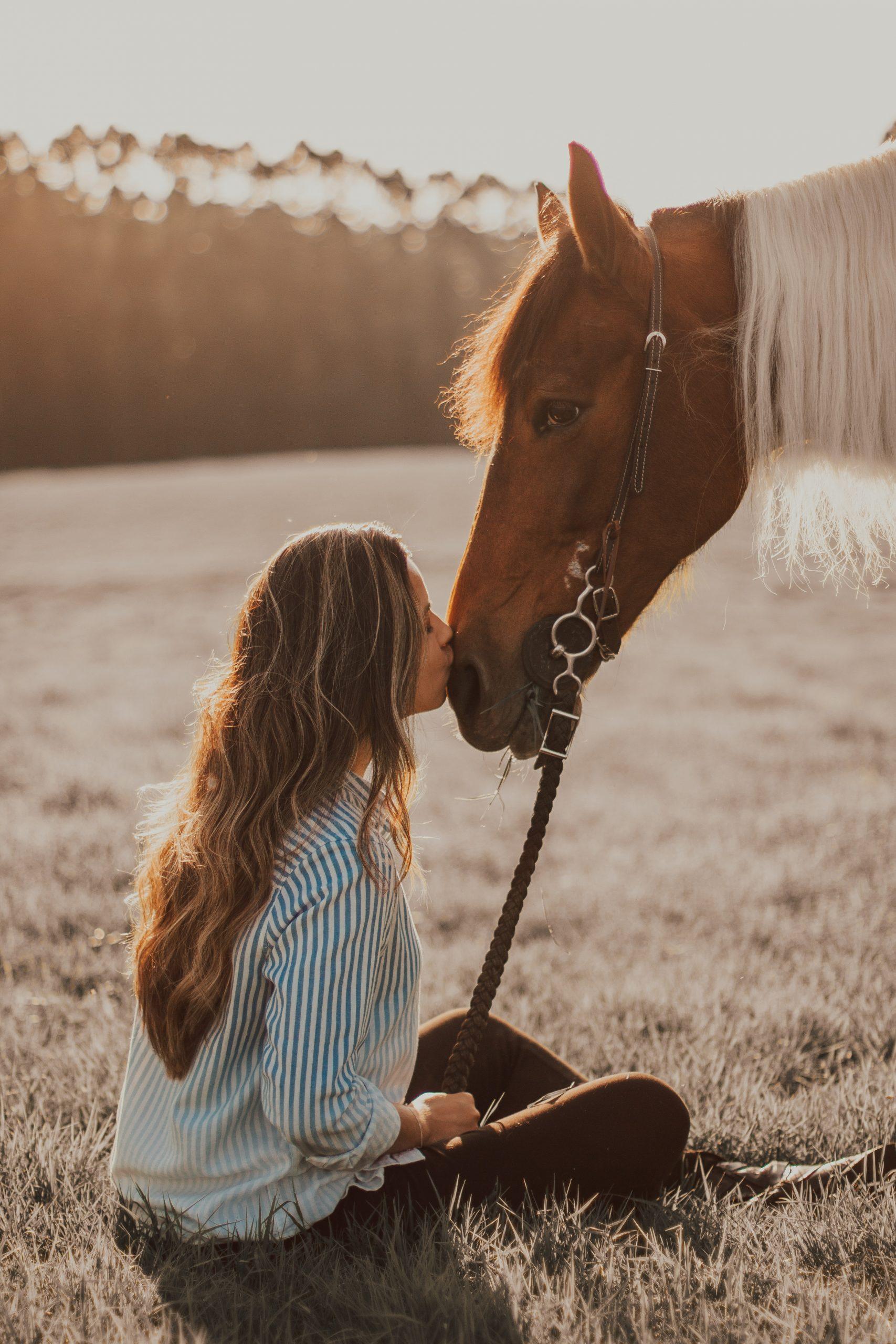 cheval-fille-voyage-connexion